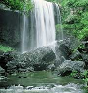Cascades, Atherton Tablelands, Queensland, Australie