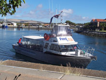 Adventure Bay Charters, Port Lincoln, Australie du Sud